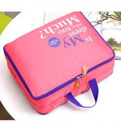 Nylon Zipper Bag